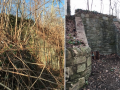Macomb-Wall-Before-After