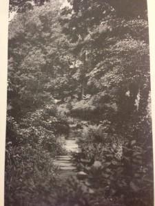 The Bridle Path, ca 1917. Photo by Frances Benjamin Johnston. (Ellen McGowan Biddle Shipman papers, RMC, Cornell University Library