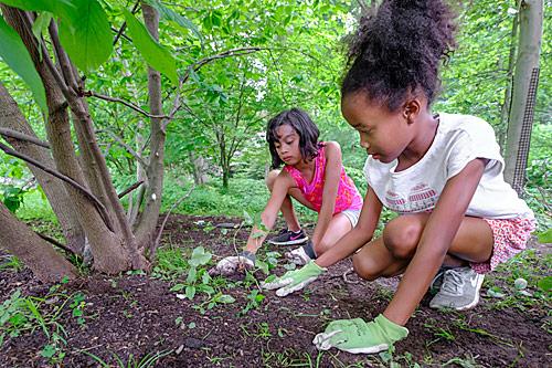 kids volunteering at Tregaron