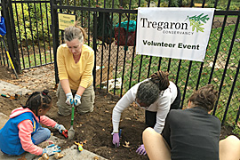 Volunteer at Tregaron